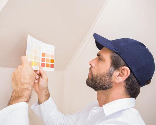 master-en-maestro-artesano-en-pintura-decorativa-en-la-construccion