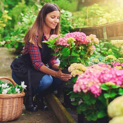 master-experto-en-arte-y-composicion-floral
