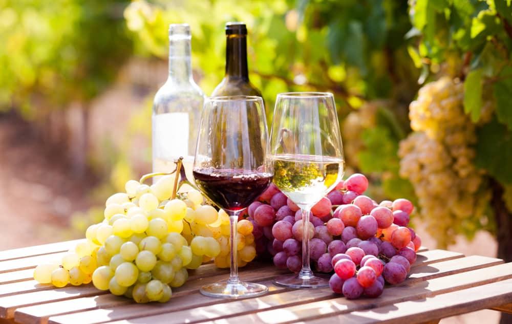 En España producimos muchos tipos de vino, descúbrelos todos