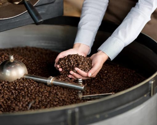 master-en-maestro-artesano-en-elaboracion-de-cafe